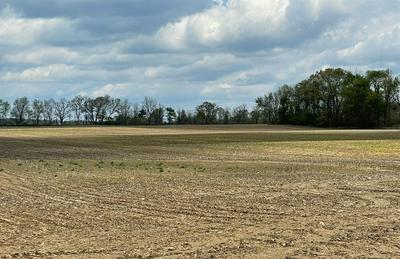 6000 E MONROE RD, Tecumseh, MI 49286 - Photo 1