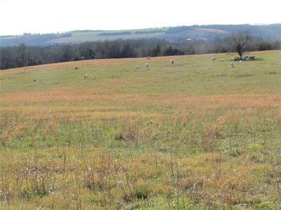 70 AC CR MADISON 2185, Huntsville, AR 72740 - Photo 1