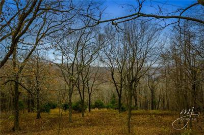 21031 HIGHWAY 62 W, Eureka Springs, AR 72631 - Photo 2