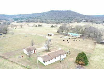 264 COUNTY ROAD 513, BERRYVILLE, AR 72616 - Photo 2