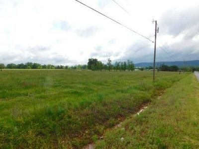 TRACT D CLYDE CARNES ROAD, Farmington, AR 72730 - Photo 1