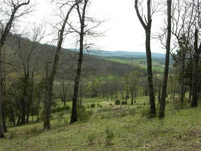 HWY 62 EAST LOT -, Berryville, AR 72616 - Photo 1