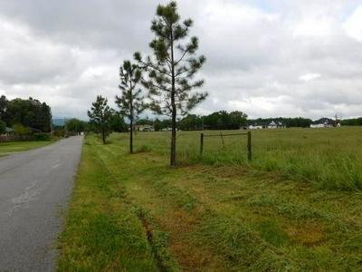 TRACT E CLYDE CARNES ROAD, Farmington, AR 72730 - Photo 2