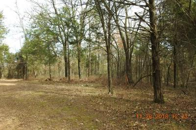 40AC BURCHFIELD MOUNTAIN TRAIL, Cedarville, AR 72932 - Photo 1