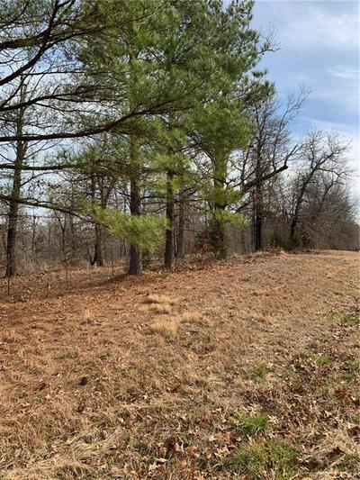 11 ACRES HIGHWAY 16, Fayetteville, AR 72704 - Photo 2