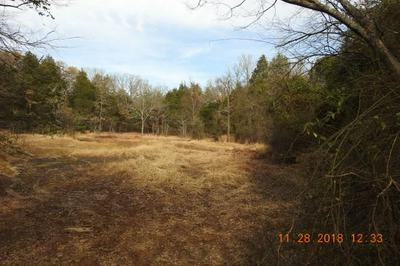 40AC BURCHFIELD MOUNTAIN TRAIL, Cedarville, AR 72932 - Photo 2