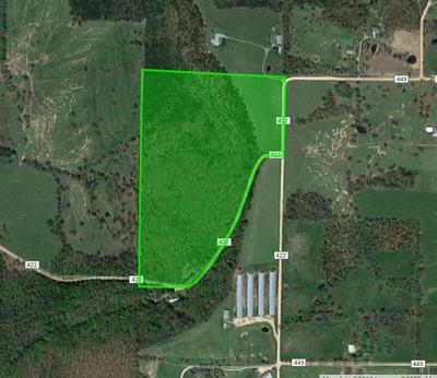1503 COUNTY ROAD 447, Berryville, AR 72616 - Photo 1