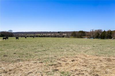 S WEDINGTON BLACKTOP RD LOT 16.54, Lincoln, AR 72744 - Photo 2