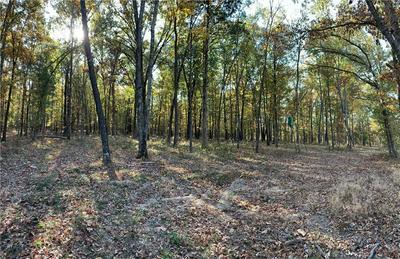 40 ACRES E BOWEN BOULEVARD, Fayetteville, AR 72703 - Photo 2