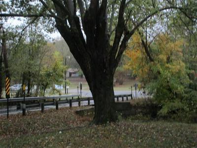 201 CROSSBOW RD, Huntsville, AR 72740 - Photo 2