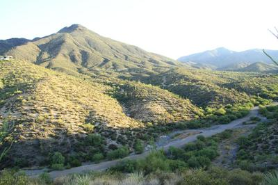 41859 N BRANGUS RD, Scottsdale, AZ 85262 - Photo 2