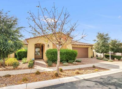 10061 E THORNBUSH AVE, Mesa, AZ 85212 - Photo 2