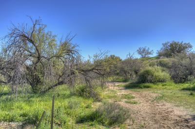 14001 E DOVE VALLEY ROAD, Scottsdale, AZ 85262 - Photo 2