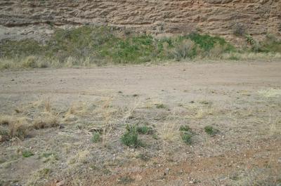 LOT 156 N PINALENO PASS ROAD # 156, Globe, AZ 85501 - Photo 1