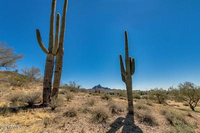 16710 E R TREVINO DRIVE # 10, Fountain Hills, AZ 85268 - Photo 1