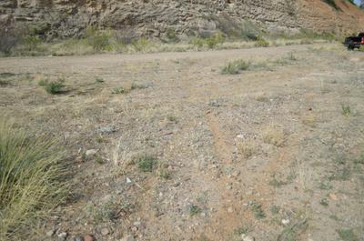 LOT 155 N PINALENO PASS ROAD # 155, Globe, AZ 85501 - Photo 1
