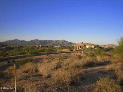 36935 N 101ST ST # 328, Scottsdale, AZ 85262 - Photo 2