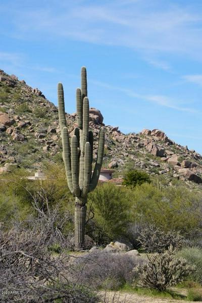 7906 E SOARING EAGLE WAY, Scottsdale, AZ 85266 - Photo 1