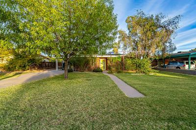 7029 N 14TH ST, Phoenix, AZ 85020 - Photo 1