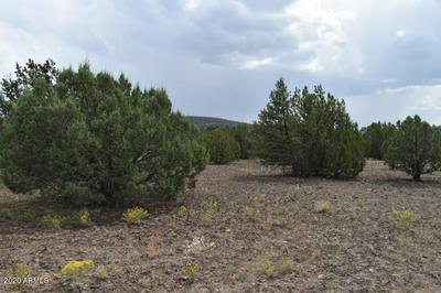 102 CO RD N3331 --, Vernon, AZ 85940 - Photo 1