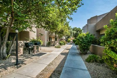 4850 E DESERT COVE AVE UNIT 140, Scottsdale, AZ 85254 - Photo 2