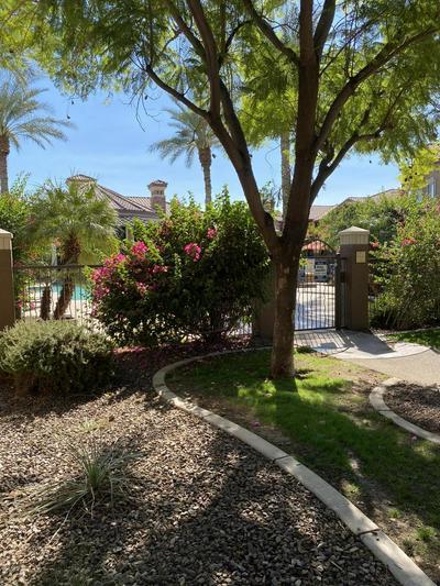 14250 W WIGWAM BLVD UNIT 1511, Litchfield Park, AZ 85340 - Photo 2