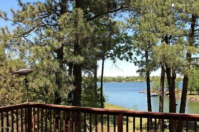 654 LAKE SHORE DRIVE, Lakeside, AZ 85929 - Photo 2