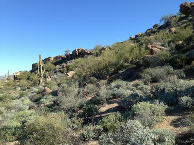 27915 N 103RD PL # 149, Scottsdale, AZ 85262 - Photo 1