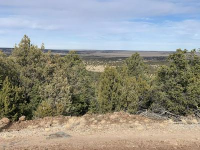 000 COUNTY ROAD N3219, Vernon, AZ 85940 - Photo 1