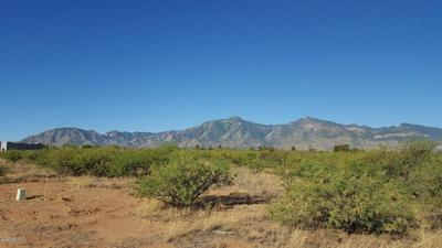 TBD LOT B LIZARD TRAIL, Hereford, AZ 85615 - Photo 2