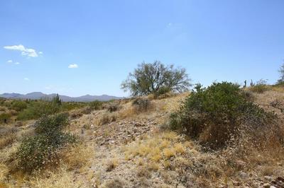 13316 N BLUE COYOTE TRL # 6, Fort McDowell, AZ 85264 - Photo 2