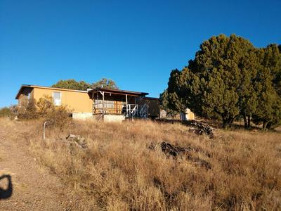 438 S ROLLING HILLS RD, Young, AZ 85554 - Photo 1
