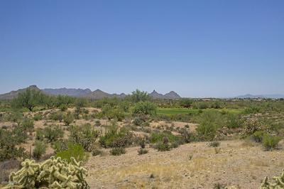 36449 N 100TH WAY, Scottsdale, AZ 85262 - Photo 1