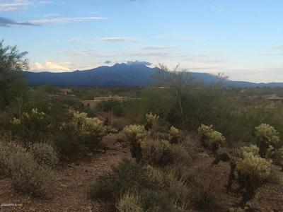 14565 N VISTA DEL ORO # 14, Fort McDowell, AZ 85264 - Photo 2