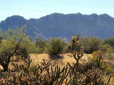 38XXX E CAREFREE HIGHWAY --, Scottsdale, AZ 85262 - Photo 1