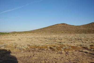 XXXX S 375TH AVENUE, Tonopah, AZ 85354 - Photo 1