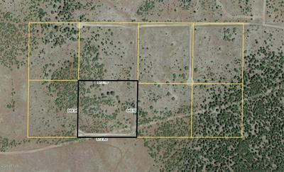 LOT 4 RED CABIN RANCH, Vernon, AZ 85940 - Photo 1