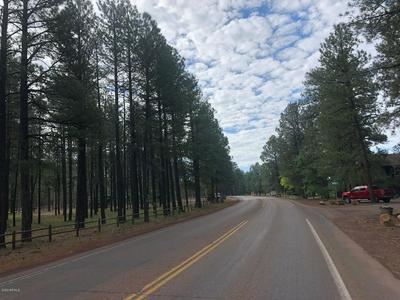 4660 BUCK SPRINGS RD, Pinetop, AZ 85935 - Photo 2