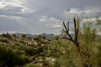 00000 N GOLDFIELD ROAD # 9, Fort McDowell, AZ 85264 - Photo 1