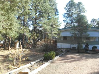 2143 WILDFLOWER RD, Overgaard, AZ 85933 - Photo 2