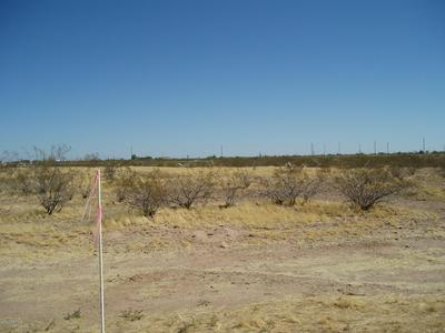 30120 W PATTON RD # 53, Unincorporated County, AZ 85361 - Photo 2