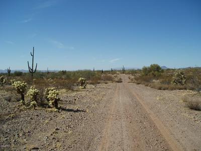 33601 W VILLA CASSANDRA WAY # 214, Unincorporated County, AZ 85390 - Photo 1