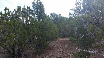 62 N STANFORD DRIVE # 005, Vernon, AZ 85940 - Photo 1