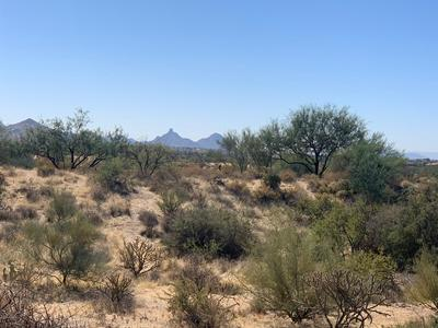 36356 N 101ST WAY # 263, Scottsdale, AZ 85262 - Photo 1