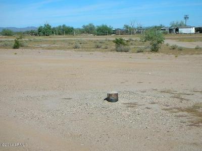 22803 W DOVE VALLEY RD, Wittmann, AZ 85361 - Photo 2