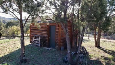 7390 W FOREST SERV LANE, Young, AZ 85554 - Photo 2