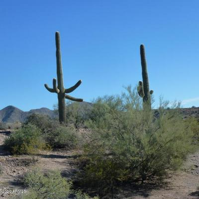 00000 N BLUE COYOTE 6 TRAIL # 6, Fort McDowell, AZ 85264 - Photo 2