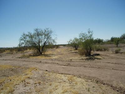 30120 W PATTON RD # 53, Unincorporated County, AZ 85361 - Photo 1