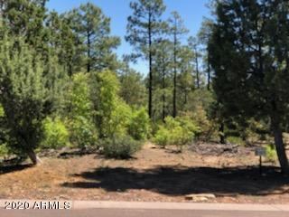 2934 BROOK PATH, Overgaard, AZ 85933 - Photo 2