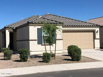 1006 W CAPULIN TRL, San Tan Valley, AZ 85140 - Photo 2